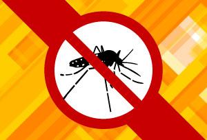 Dengue---site